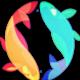 偷渡鱼 logo