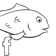 @fishdust