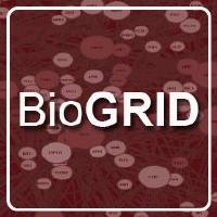 @BioGRID