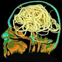 @summerfieldlab