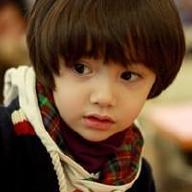@tangyingcai