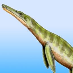 dcharatan's avatar