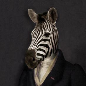 nazebra (Naz Zebra) / Starred · GitHub