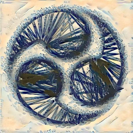 Yamashou's icon