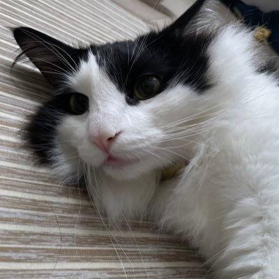 grenet's icon