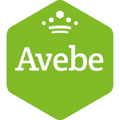 kiosk/index html at master · Avebe/kiosk · GitHub