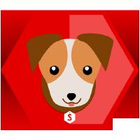 @scout-app
