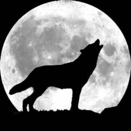 Greenwolf25
