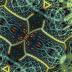 koopa