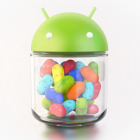 Jelly Bean Mini Project