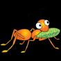 @gluster-ant
