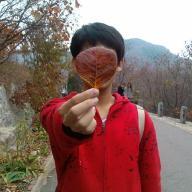 @yangshizi
