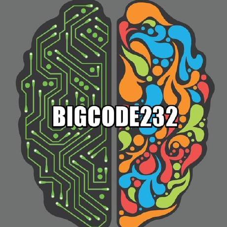 BigCode232
