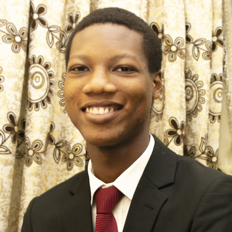 Emmanuel Oluwagbemiga Adebiyi (Smart)