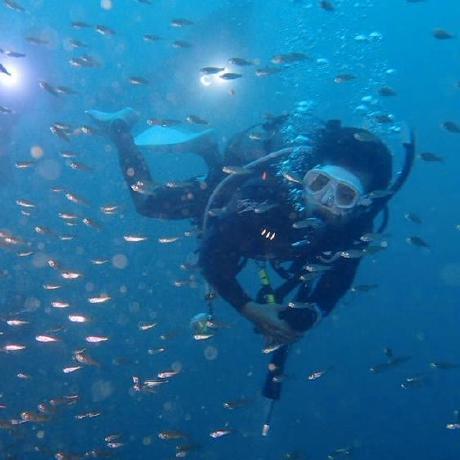 daichikuwa0618