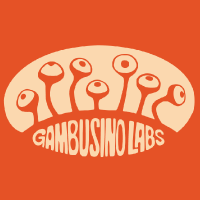 @GambusinoLabs