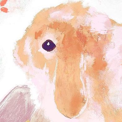 tohara's icon