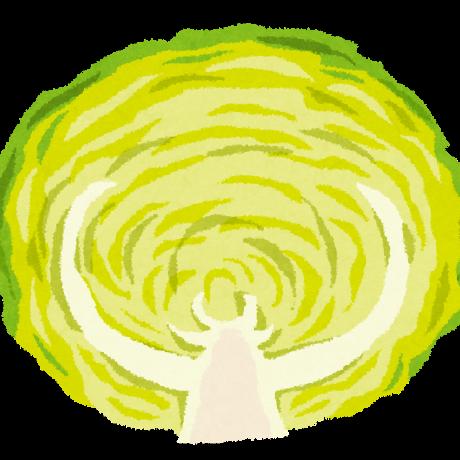 cabbage_lettuce