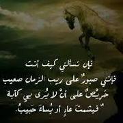 @abdullahelsheikh