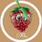 @pixl-project