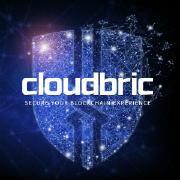 @Cloudbric-Project