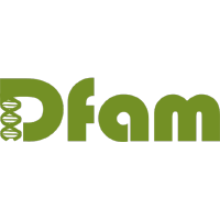 @Dfam-consortium