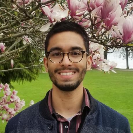 Ali Rizvi's avatar