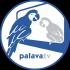 @palavatv