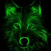 @Greenwolf