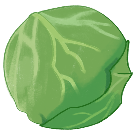 cabbagecabbagecabbage Chen