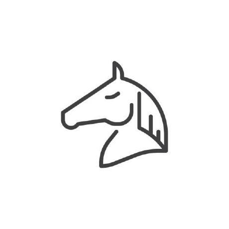 lostviolinist Lee's avatar