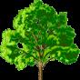 @treestonemedia