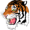 @tiger-server