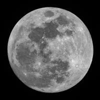@Full-Moon-Robotics