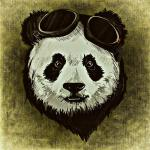 @panda-madness