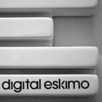@digital-eskimo