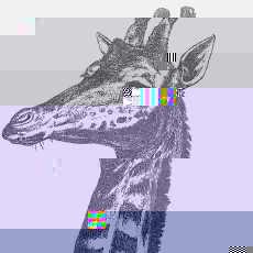 Avatar of c-dante