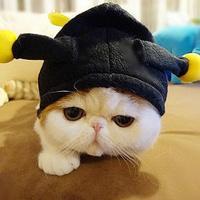 GitHub - liqiang372/cs162: berkeley cs162 homework for