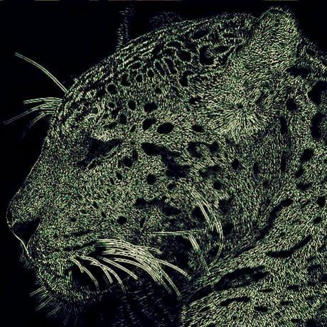 fbernaly