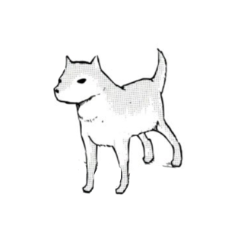 Uploaded avatar of aeperea
