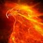 @the-phoenix