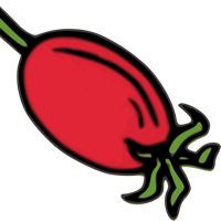 1rosehip (1rosehip) / Followers · GitHub